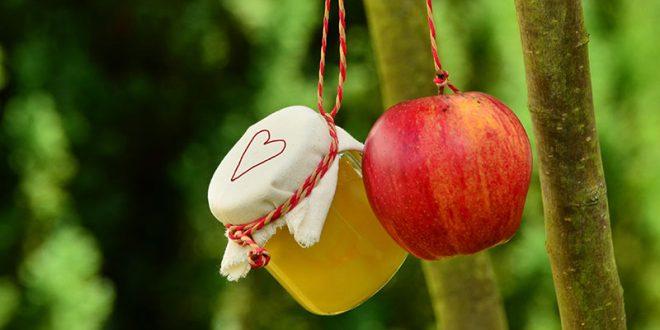 کمترین قیمت کنسانتره سیب برای صادرات به روسیه